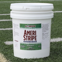 GT Ready2Spray White Athletic Paint